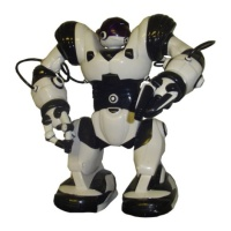 Robosapien Robot Hire